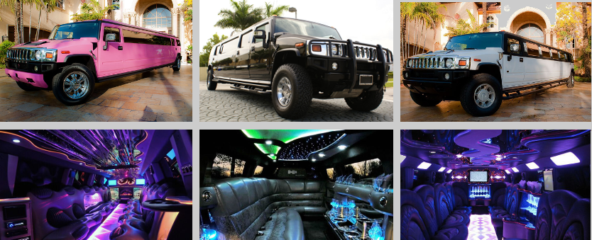 birthday limo service west palm beach